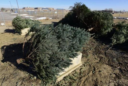 Environmentally Sustainable Artificial Christmas Tree